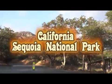 Sequoia National park Video guide (California, US)