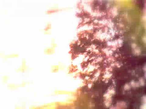 """DIZZY CHANT VIDEO by Shana Falana """"In the Light"""" EP out now"""