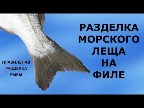 Как разделать Морского леща - Сибрим. How To Fillet A Sea Bream Fish