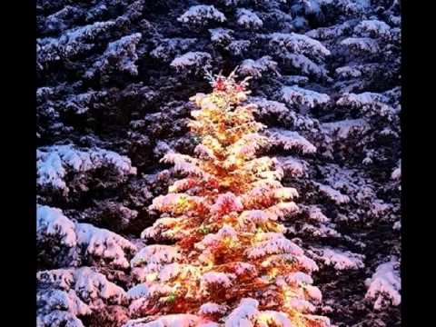 o christmas tree by boney m