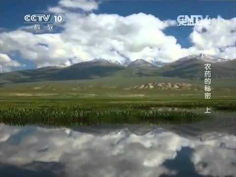 中國-走近科學