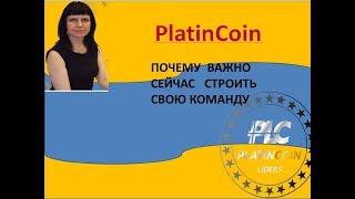 PLATINCOIN -ПОЧЕМУ ВАЖНО СЕЙЧАС СТРОИТЬ СВОЮ КОМАНДУ