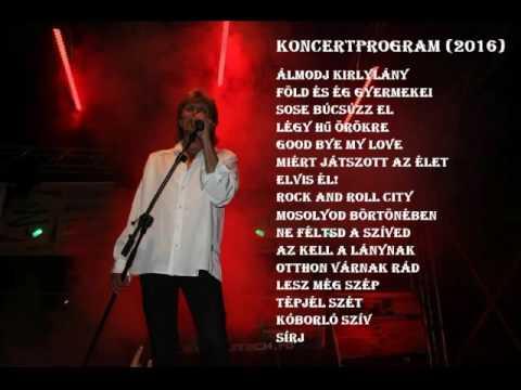Homonyik Sándor - Koncertprogram (2016)