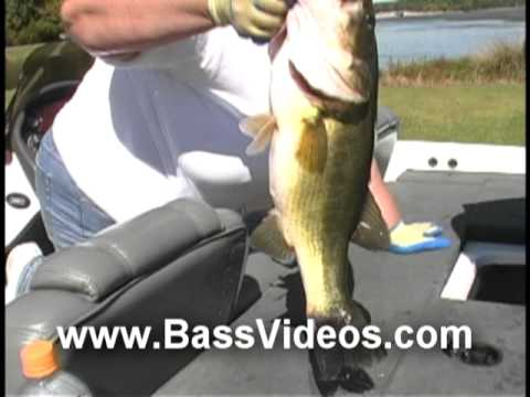 Bass Fishing * Lake Guntersville Aerial Video Highlights