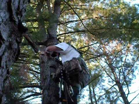 Trophyline Tree Saddle; Simulated Hunting Climb