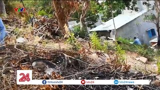 Nóng tình trạng phá núi,  xâm hại đất rừng phòng hộ | VTV24