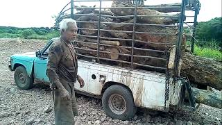 เก่าแต่เก๋า!!กระบะอีซูซุฟาสเตอร์จัดหนัก ชีวิตต้องสู้ รถดั้มซิ่ง ดินด่วน dump truck excavator