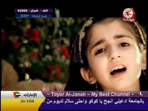 Toyor Al Jannah - كنت قاعدة video