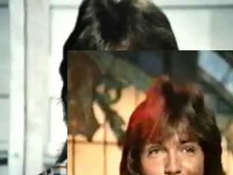 Partridge Family - It Mean I