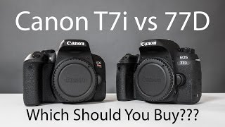 Canon T7i VS 77D and 80D – Which Rebel DSLR Should You Buy