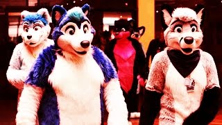 PEOPLE ARE MISTAKING ME FOR A FURRY!
