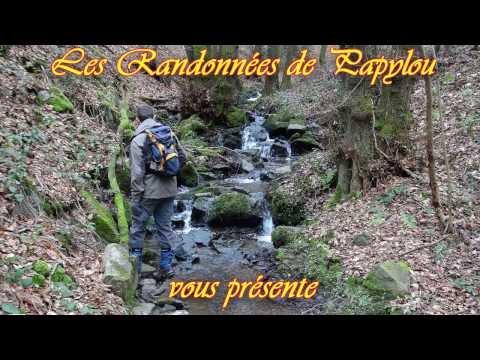 Le ruisseau et les étangs du Chêneau