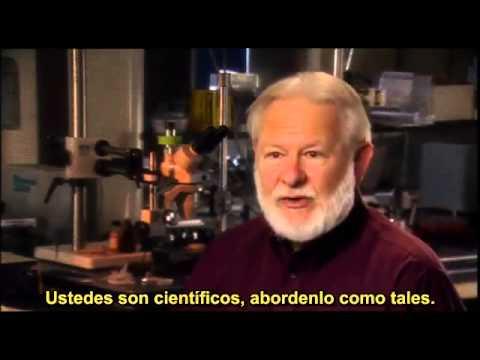 DMT La molecula espiritual español latino sub