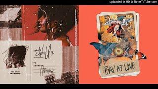 Download Lagu Bad In Havana (Mixed Mashup) - Camila Cabello & Halsey Gratis STAFABAND
