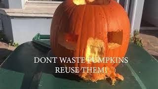 Halloween Pumpkin - Reuse your pumpkins