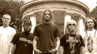 Watch Soldiers Of Jah Army Decide Youre Gone video