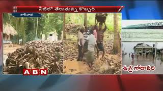 Huge Flood Water Logging In Coconut Farms Due To Heavy Rains In East Godavari District