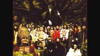 Devendra Banhart - Hey Mama Wolf