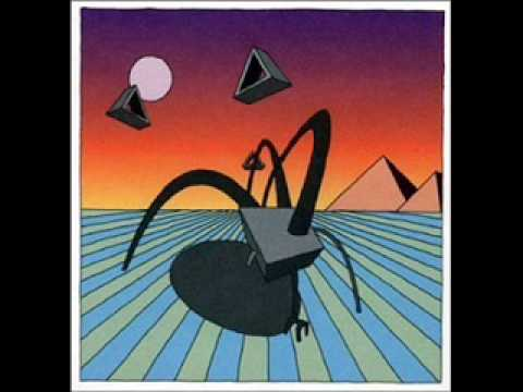Dismemberment Plan - The City