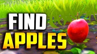 """WHERE TO FIND APPLES in FORTNITE! (Apple Tree Locations)  """"Consume hop rocks apples or mushrooms"""""""