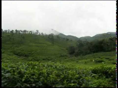 Anuraga Vilochananayi-Ramakkalmedu-Neelathamara