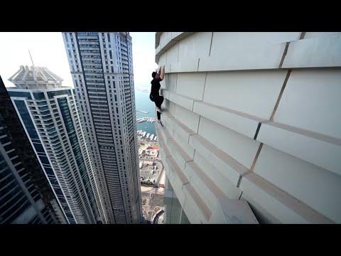 Spider in Dubai - Olegcricket