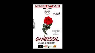 NDP - GnibissiL