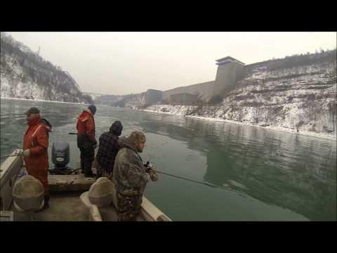 steelhead fishing Niagara River February 2014