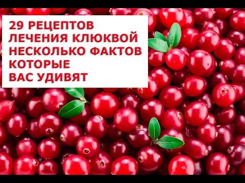 0 - Журавлина корисні властивості і протипоказання Лікувальне застосування журавлини в народній медицині