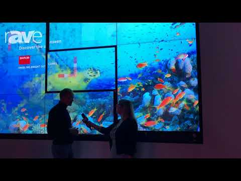 Sara Abrons Interviews Barco Engineer Tom Dewaele, Designer of the UniSee LCD Video Wall