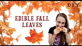 How To Make Edible Fall Leaves!