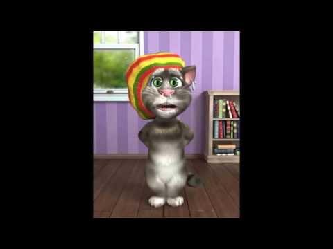 Packy El Gato Hondureño (LA VIDA DEL POBRE)