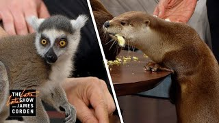Screech Owls & River Otters w/ Jack Hanna, Jeff Goldblum & Marlon Wayans