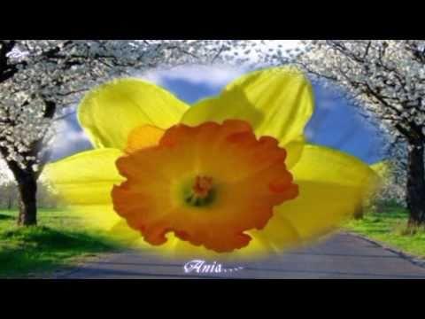 Wielkanocna Piosenka