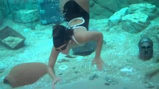 Sea World Orlando Pearl Diver