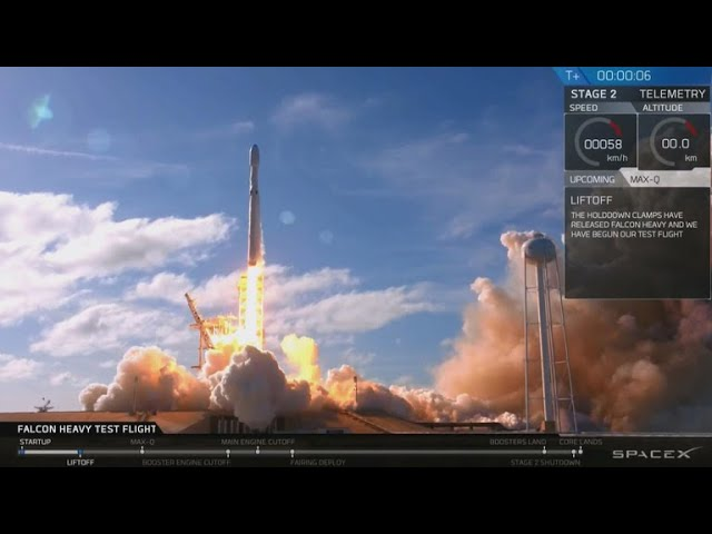 SpaceX celebrates successful rocket launch