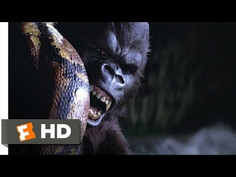 King Kong (59) Movie CLIP - Snake vs. Kong (1976) HD