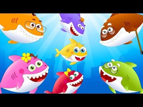 Baby Shark Songs +Cartoon Rhymes for Children by Little Kids TV