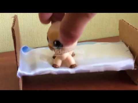 Как сделать петшопа своими руками фото