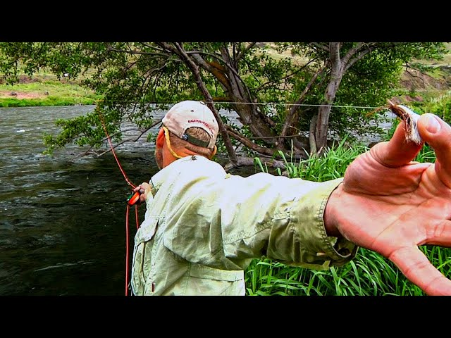 Sky High Salmonfly by Todd Moen - Deschutes River Fly Fishing