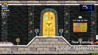 Rogue Legacy in 13:41 (WR from v1.0.9)