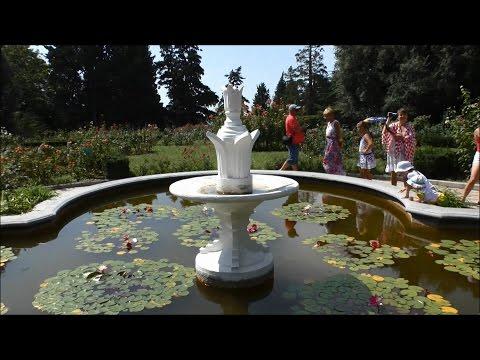 Никитский ботанический сад (август, 2016).