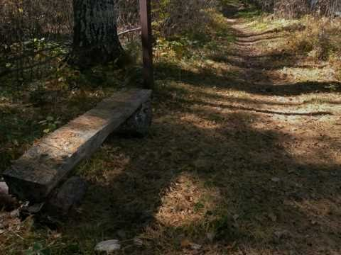 Chequamegon-Nicolet National Forest, Day Lake Campground sites 1-28
