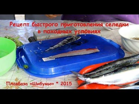 Рецепт быстрого приготовления селедки в походных условиях