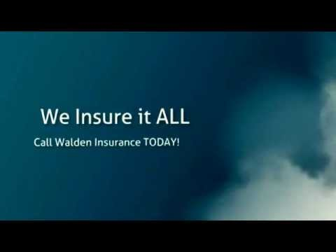 Auto Insurance New Port Richey | Top Rated Insurance!