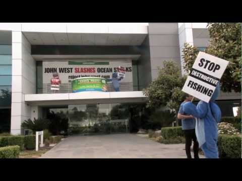 Shark Attack! Greenpeace gives John West HQ a makeover