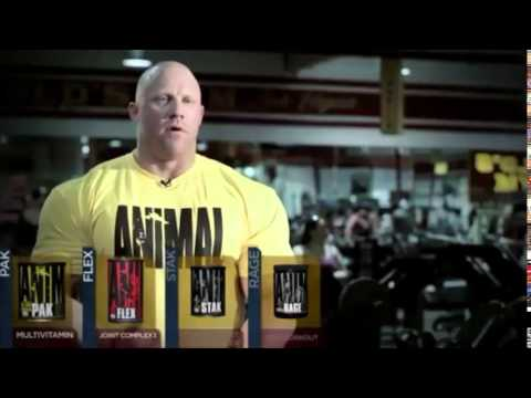 Universal Nutrition Animal Stak - Testosterone Optimizers