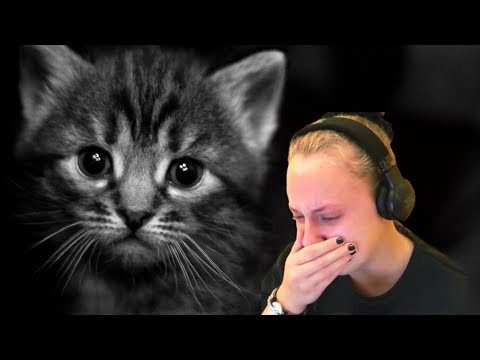 ЗАПЛАКАЛ? ПРОИГРАЛ! | ПOПРОБУЙ НЕ ЗАПЛАКАТЬ ЧЕЛЛЕНДЖ | TRY NOT OT CRY CHALLENGE