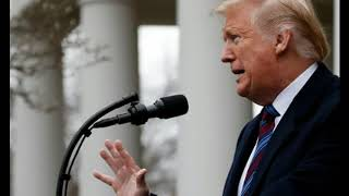 Trump Mulls 'Emergency Powers' to Build Wall, Says Shutdown to Continue Until Issue Solved