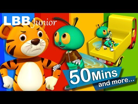 Fly Song | And Lots More Original Songs | From LBB Junior!